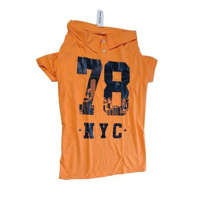 Canes Venatici Polo All Season Tshirt for Dogs, 18 inch, orange nyc