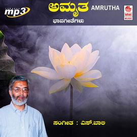 Amrutha- S. Baali