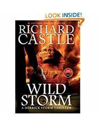 Wild Storm: A Derrick Storm Novel