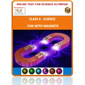 Class 6, Fun with magnets, Online test for Science Olympiad