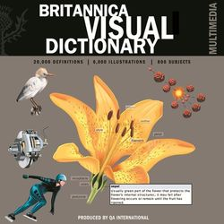 BDS- Visual Dictionary CD