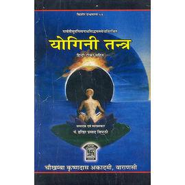Yogini Tantra By Pt. Harihar Prasad Tripathi