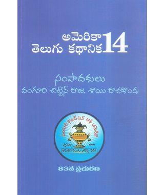 America Telugu Kathanika 14