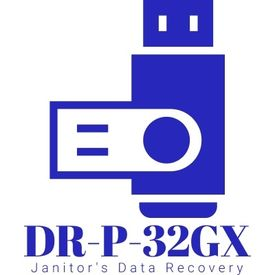 Data Recovery Service for Pen drive or Memory Card up to 32 GBX