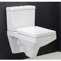 Hindware L650mm x W390mm x H670mm Viva Extended Wall Mounted Water Closet with Complete Set# 92061/123, pastel