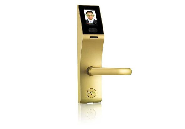 Grains FL1000 Face Recognition Gold Right Hand