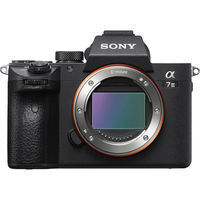 Sony Alpha a7 III Mirrorless Digital Camera with Sony FE 24-105mm Lens