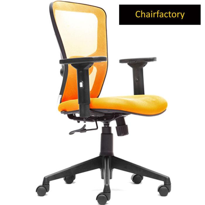 Swiss LX MB Ergonomic Study Chair, mint green