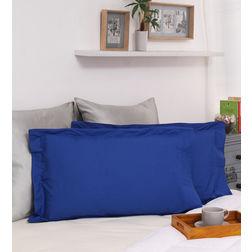 Dreamscape 100% Cotton 250TC Percale Blue Pillow Pair, blue