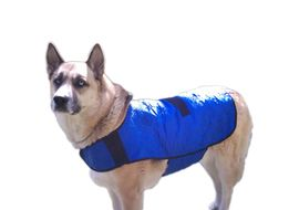 Hydro Kyle Dog Cooling Coat for Giant Breed Dogs, blue, xxl