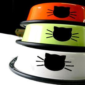 Puppy Love Stainless Steel Designer Cat Feeding Bowl, orange