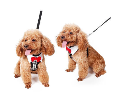 Puppy Love Tuxedo Body Harness for Toy to Small Breed Dogs, medium