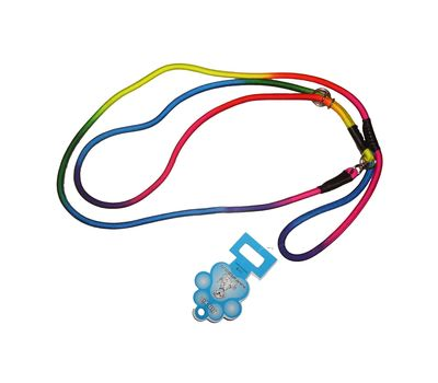 Jin Xin Rainbow Nylon Dog Show Leash, rainbow, med, 57 inch