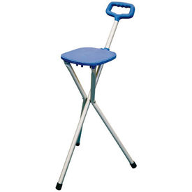 Walking stick with stool