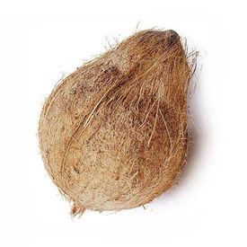 Coconut, 1 nos