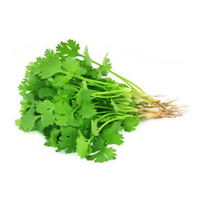 Coriander Leaves, 1 bunch
