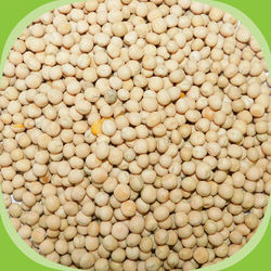 White Peas / Vellai Pattani, 500 grams