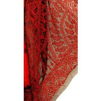 Red - Black Lucknowi Chikankari Saree