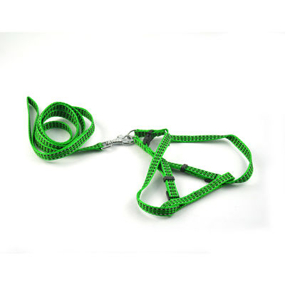 Easypets BESTMASTER Dog Leash with Collar (Small) (Green)