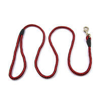 Easypets STELLAR Dog Leash Regular Medium (Red)