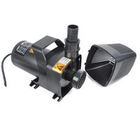 SunSun JAP-6000 Amphobious Pump