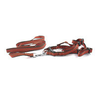 Easypets STELLAR Dog leash with collar and bell (Orange)