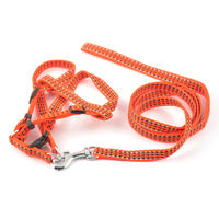 Easypets BESTMASTER Dog Leash with Collar (Small) (Orange)