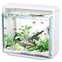 Hailea natur biotop fish tank, 80l