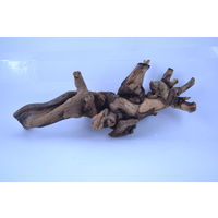 Ocean Free Driftwood Root Style 11 - For Nano Tanks