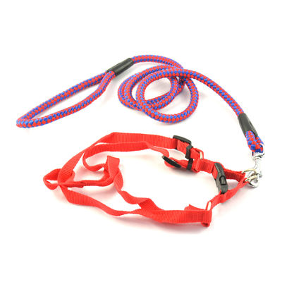 Easypets TRUECHOICE Adjustable Collar Strap Leash (Medium) (Red)