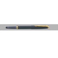 Pierre Cardin Momento Fountain Pen