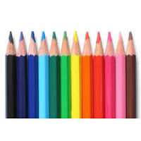 Doms Full Size Colour Pencil 12 Shades (Flat Tin Packing)