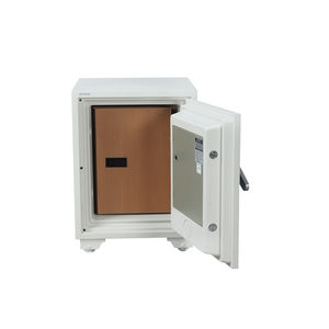 OZONE DIGITAL SAFES: GUARDIAN DATA-600