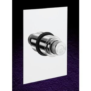 ESSESS: ESSENTIAL E251H CONCEALED FLUSH VALVE 40 MM (DEAL) SQUARE PLATE