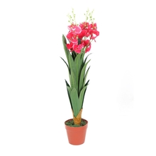 Orchid Tree with Pot - @home by Nilkamal, Pink