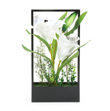 White Lily Potted Plant in Frame - @home by Nilkamal, Black