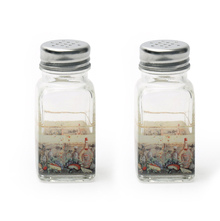 Glass Salt & Pepper Round Set - @home by Nilkamal, Multicolor