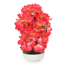 Lion Flower Potted Plant - @home by Nilkamal, Red