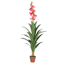 Orchid Tree with Pot - @home by Nilkamal, Red