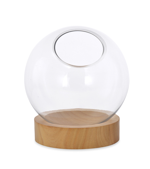 Bowl Vase with Wood Plate - @home by Nilkamal, Clear