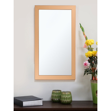 Contemporary Champ 30X60CM Mirror, Gold