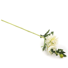 Gerbera 55 cm Flower Stick - @home by Nilkamal, White