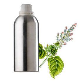 Basil Oil - Vietnam Type, 25g