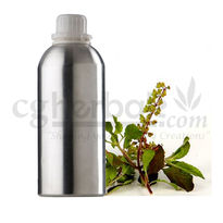 Holy Basil Oil, 25g