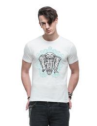 Divine Elephant