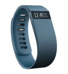 FITBIT CHARGE SLATE SMALL,  blue
